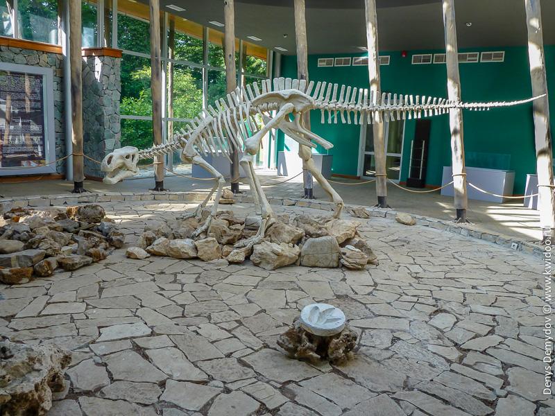 Скелет динозавра в Грузии, Сетаплия