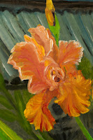 Irises. Triptych. 1. Rare bright irises and Japanese lanterns
