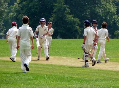 Bosham celebrate a wicket