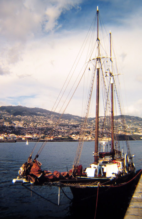 historic photo: an yacht in Funchal port
