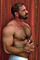 Muscle Daddy Bears - Incredible Hairy Chest Hunks