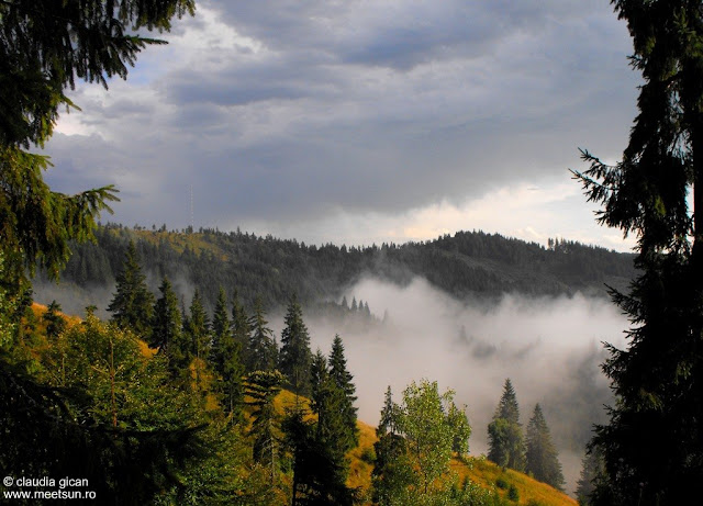In munti, dupa ploaie