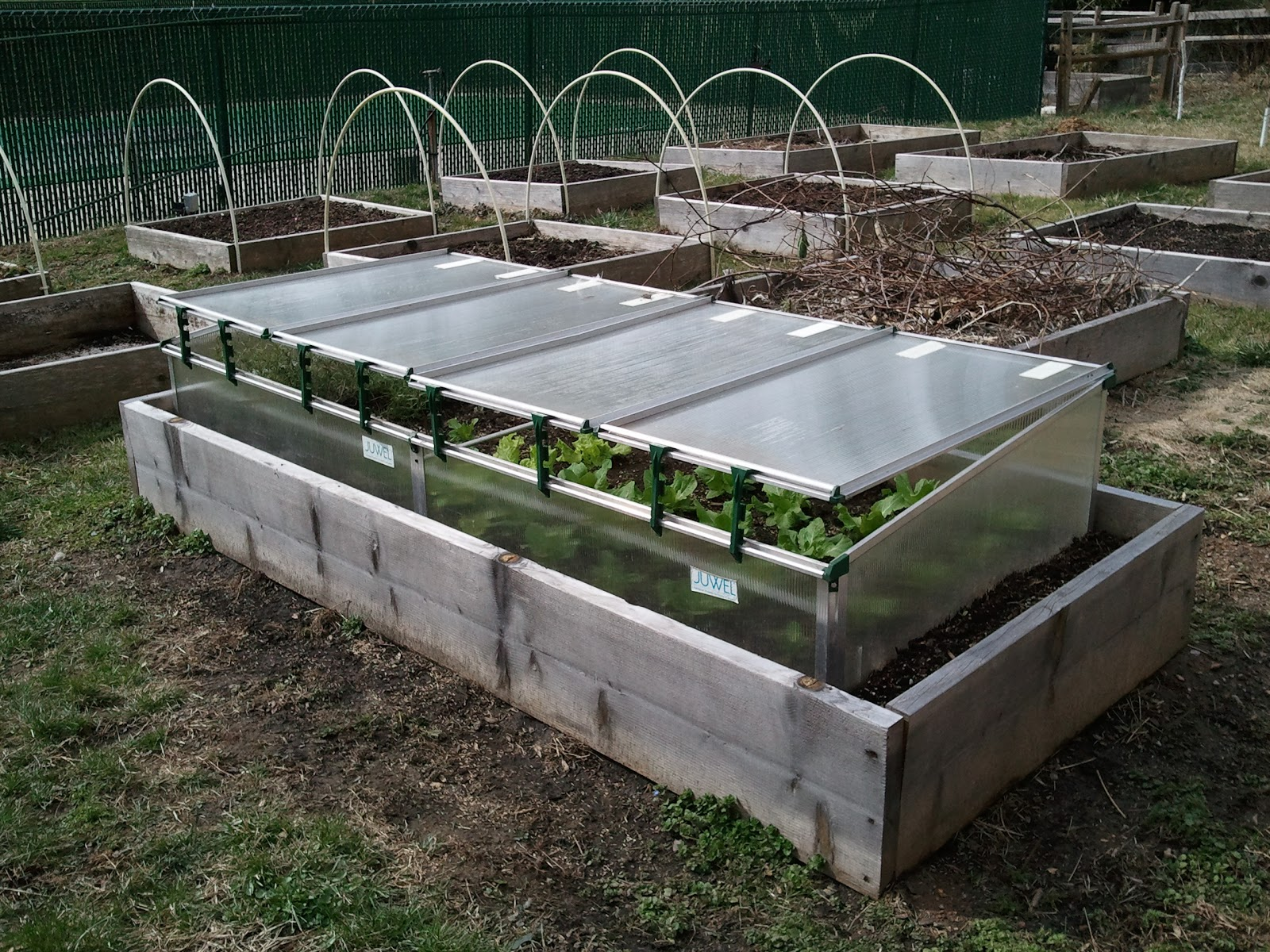 Italian Gardening: Cold Frame Protects Plants During Winter