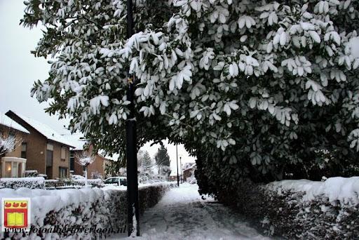 eerste sneeuwval in overloon 07-12-2012  (51).JPG
