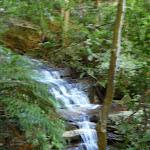 Sylvia Falls (94156)