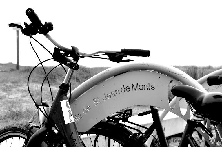saint-jean-de-monts-vendee-velo