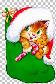 Kitten sock~Bettyg.jpg