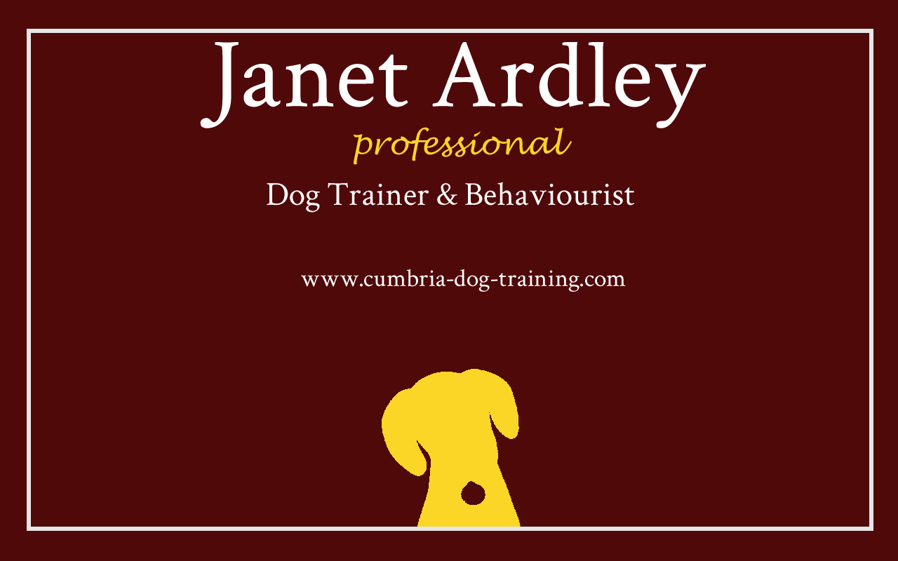 Cumbria Dog Training: My Business Cards