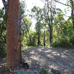 Intersection of Hawkesbury track and Sani Depot Trail (378716)
