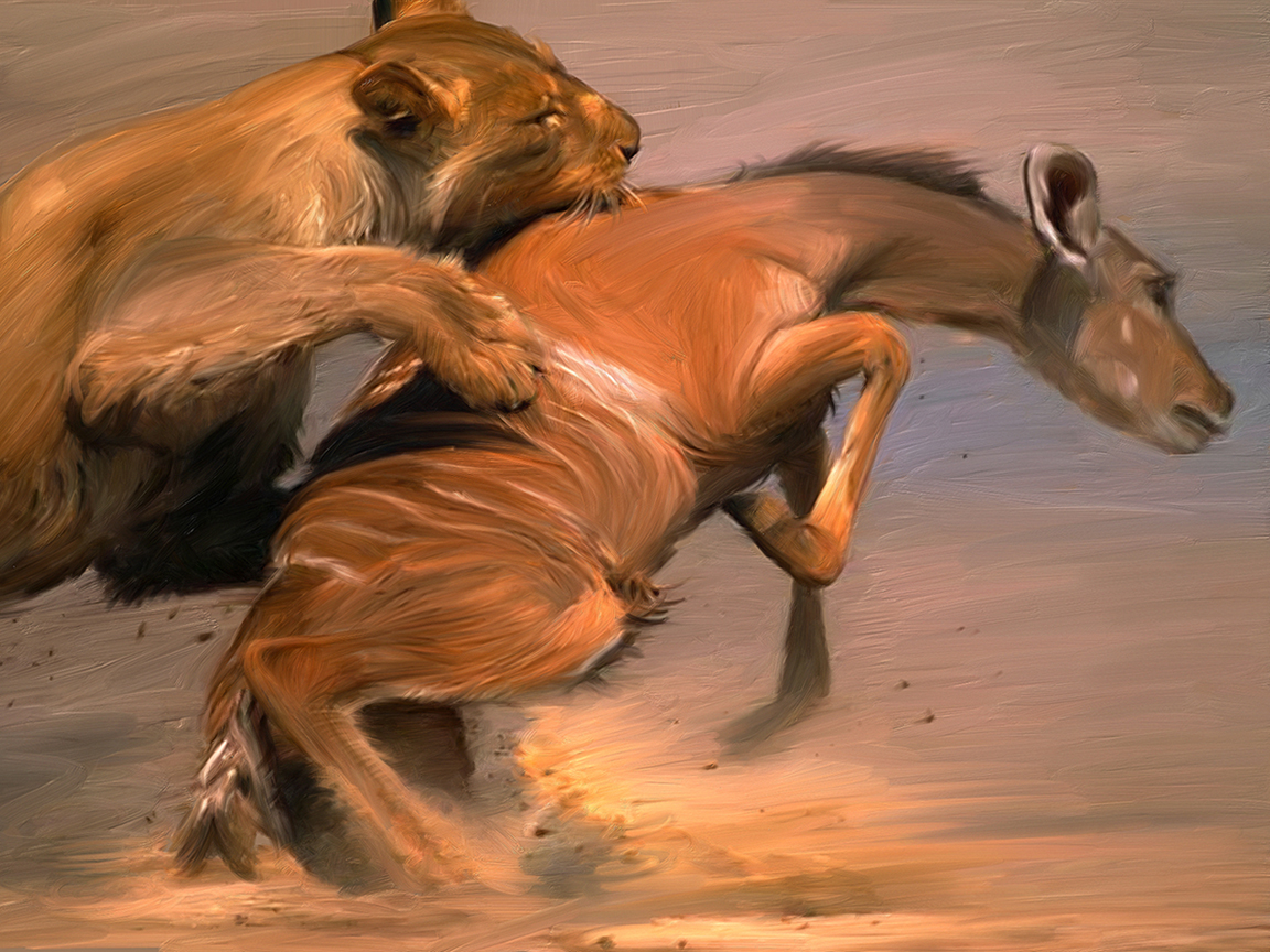 Most Inspiring   Wallpaper Horse Spirit - Wallpapers-room_com___Survival_of_the_Fittest_by_ApplePlus_1152x864  Graphic_997430.jpg