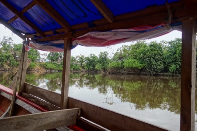 trip to el chino in the peruvian amazon
