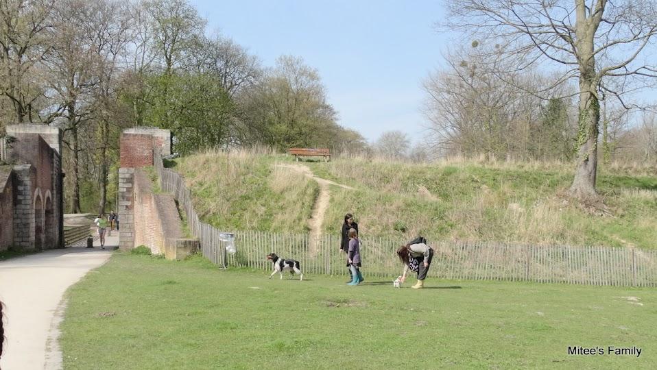 Balades canines en Nord (59)/Pas de Calais (62) - Boulogne-sur-Mer, Calais et Lille - Page 4 DSC01929