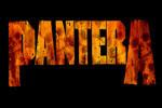 logo-pantera
