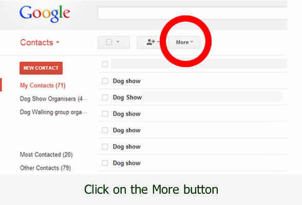 Download your contacts email addressed for gmail - with www.dorsetdog.com