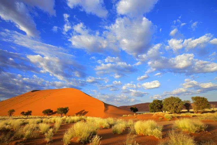 You simply cannot visit Namibia without seeing the Sossusvlei Sand Dunes.