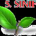 5.SINIF GEOMETRİK CİSİMLER - 3 BOYUTLU CİSİMLER YAPRAK TESTİ 1