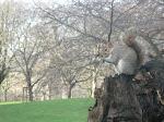 Londres: St James's Park