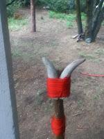 homemade snake stick for survival