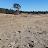 Frank Tamis avatar image