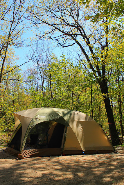 For more photos info and a video of the tent in action - shoot over to L.L. Bean. & BackwoodsPlaid: Review: L.L. Beanu0027s King Pine Dome Tent