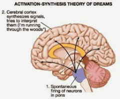 Image of Dreaming is therefore merely an incidental result of the brain's need for continual activation.