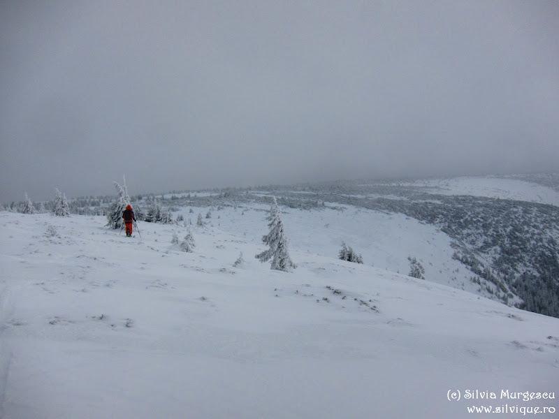 2014.12.27 - M-tii Calimani - Gura Haitii, Calimanul Cerbului, Vf Retitis pe schiuri