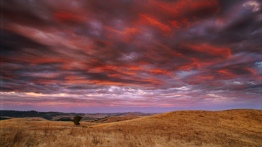 Sky of Fire, Sunset after a Thunder Storm, Sonoma County, California.jpg