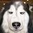 John Stewart avatar image