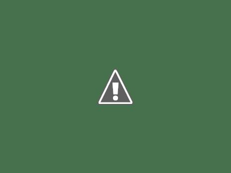 El motor Stirling mas simple IMG_0707+%255B800x600%255D