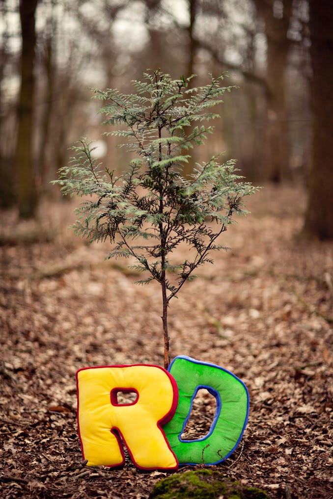 cute forest engagement session by STUDIO 1208