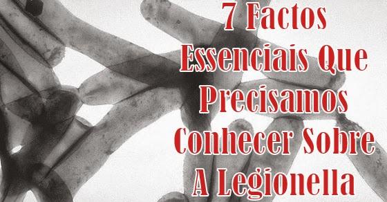 7 Factos Essenciais Que Precisamos Conhecer Sobre A Legionella E A Doença Que Provoca