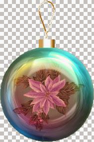 pinkpoinsettia.jpg