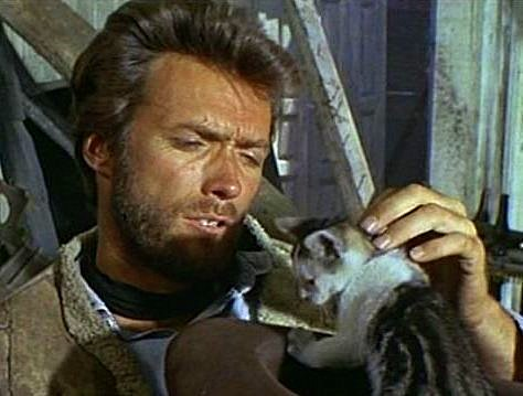 Clint Eastwood and a cat