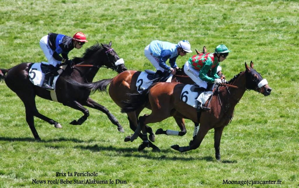 Photos Auteuil le 21-06-2014 IMG_2205