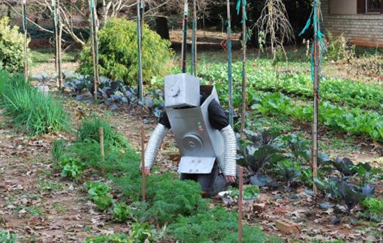 growBot Garden