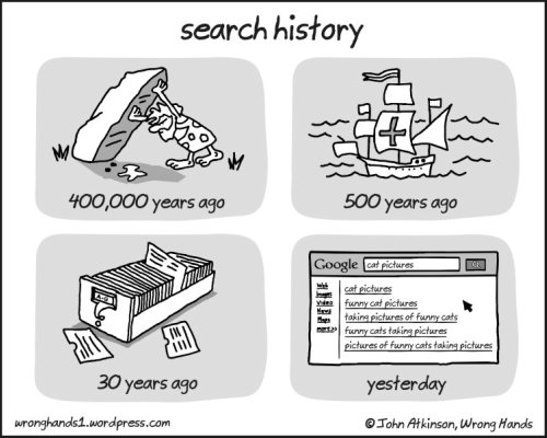 cartoon of what people did through history,which ends with Google search for cats