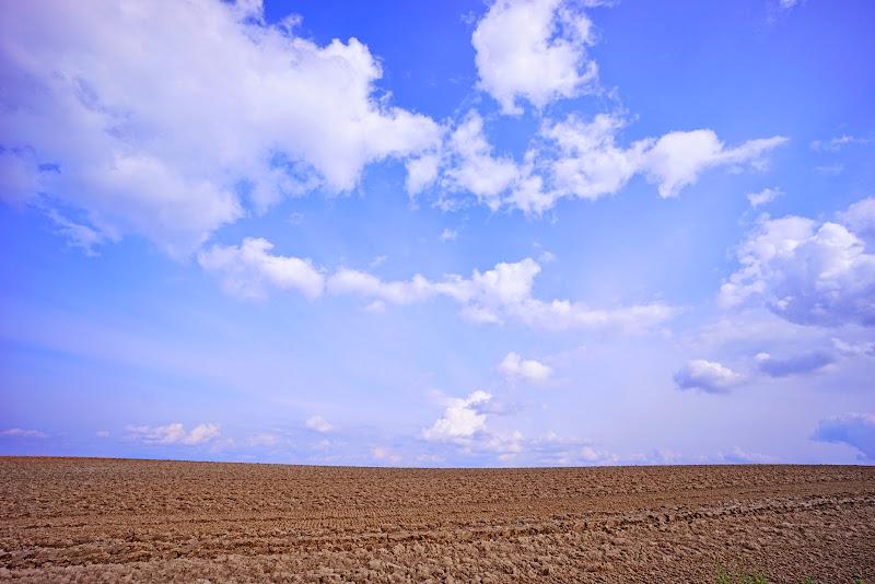 美瑛 ルベシベの丘 写真2