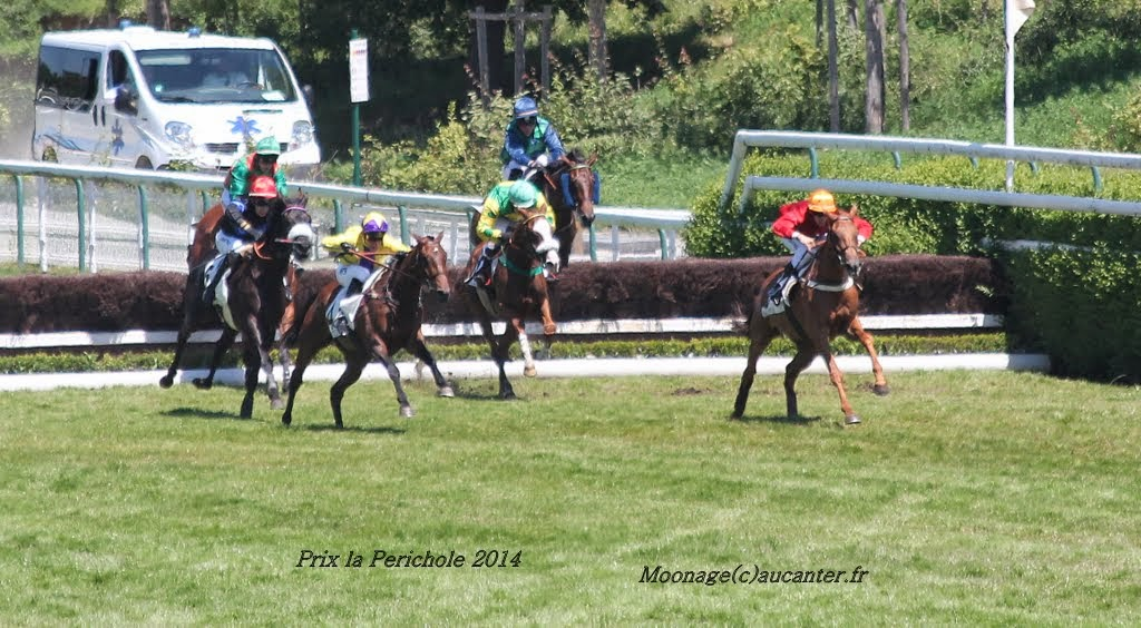 Photos Auteuil le 21-06-2014 IMG_2224
