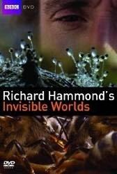 Richard Hammond's Invisible Worlds - Richard và thế giới vô hình