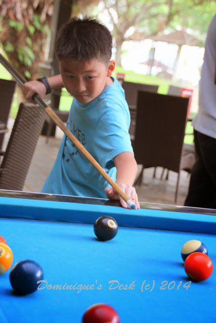 Monkey Boy Playing Snooker