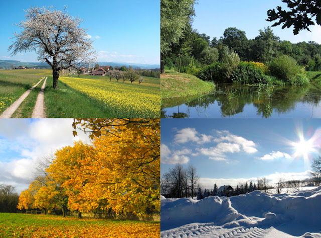 Bài thơ Bốn mùa ở đâu