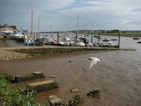 River Exe, Topsham, Devon