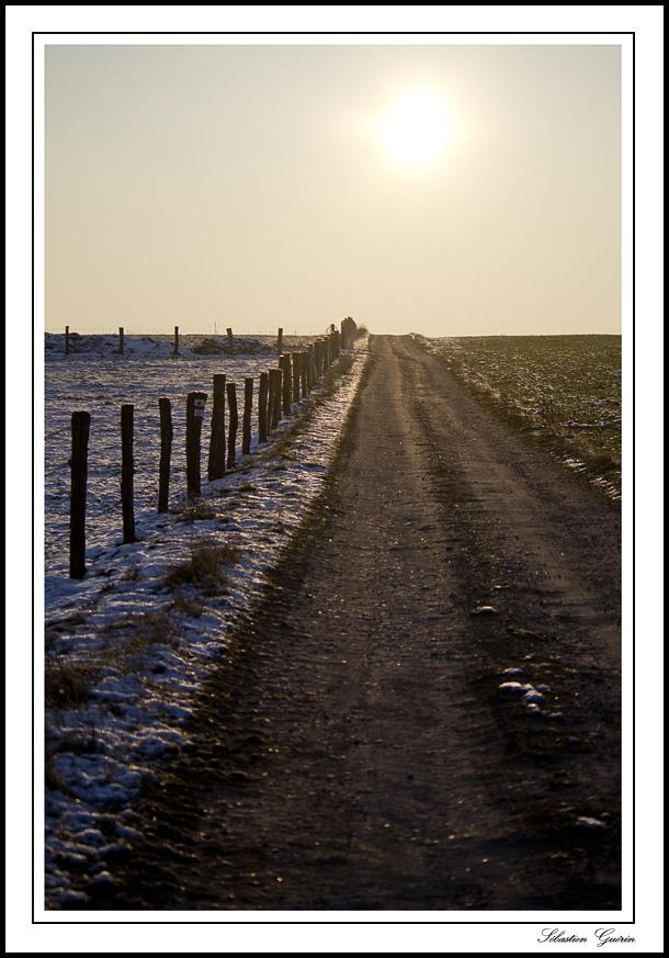 Le chemin vers la lumière. SEBY0976