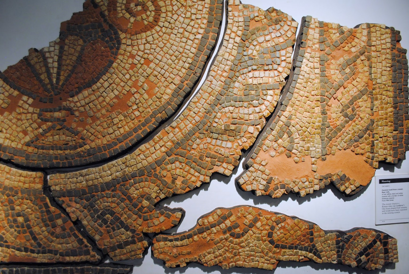 My Photos: Museum of London -- Bucklersbury Mosaics