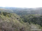 Views along Knibbs Knob Trail