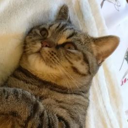 Sean Keller