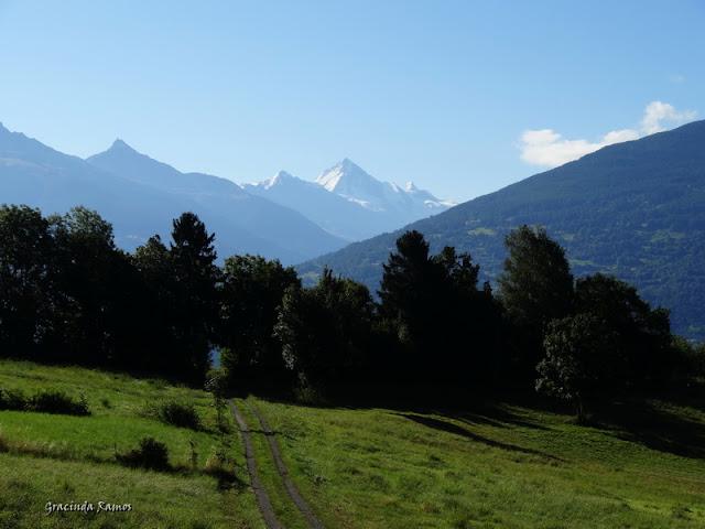 passeando - Passeando pela Suíça - 2012 - Página 9 DSC01966