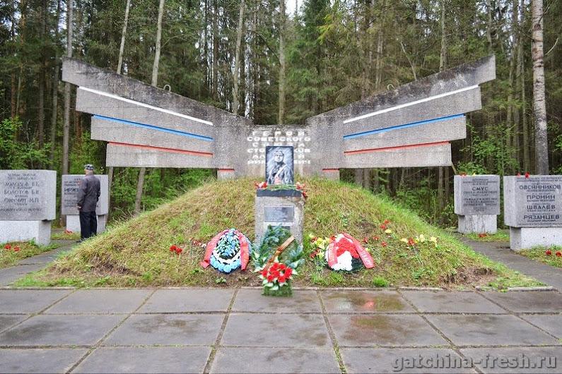 Торжественно-траурный митинг у памятника защитникам Ленинградского неба на Корпиковском шоссе 8 мая 2015 года