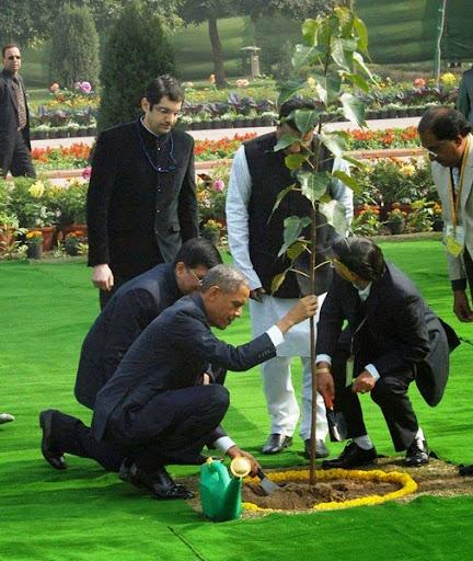 Tổng thống Hoa Kỳ Barack Obama kính cẩn trồng cây bồ đề tại New Delhi, Ấn Độ