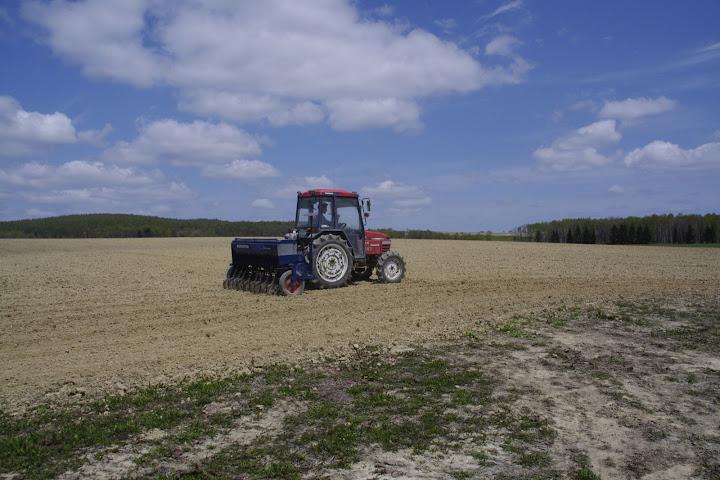 写真:大地に播種するトラクター